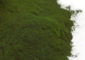 Praf de microalge Chlorella