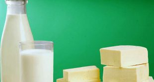 Alimente probiotice